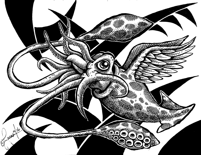 Flying Squid BLOG
