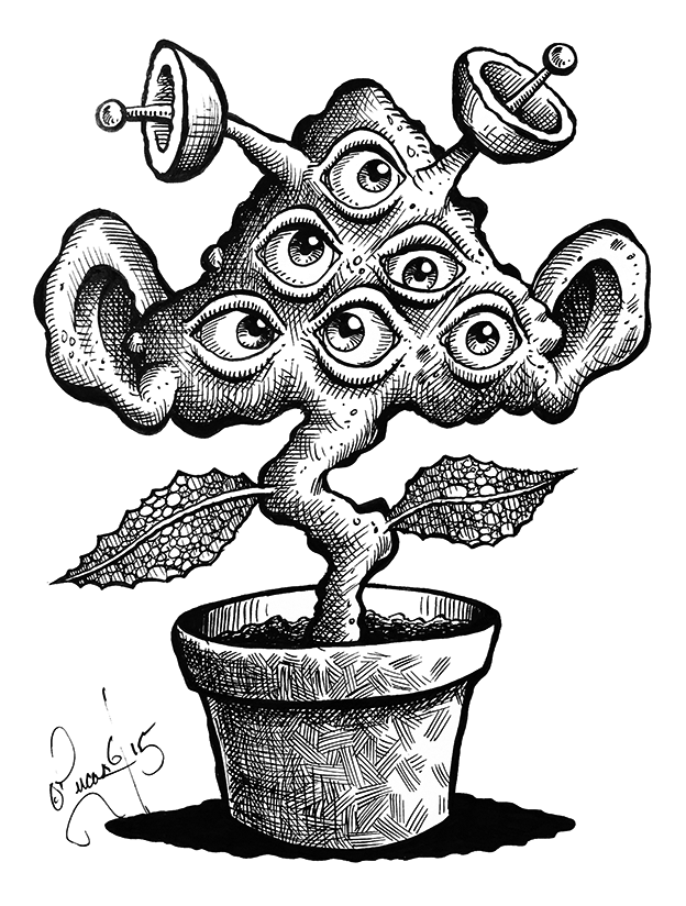 Eye Plant BLOG